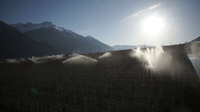 WS View of sprinkling water in field at Italy