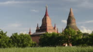 WS LA View of Stupas of ancient temples at Pagodas field of Bagan / Bagan, Mandalay Division, Myanmar