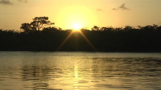MS View of sunset at mangrove / PE, Belize