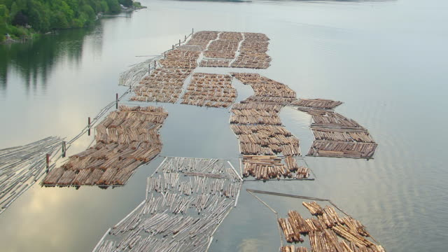 WS AERIAL View of timber rafts on water / Olympia, Washington, United States