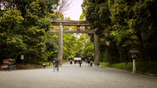 WS T/L View of tourists and visitors passing under giant wooden tori gate at meiji jingu shrine / Tokyo, Japan