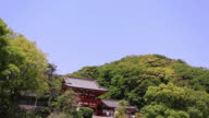 WS TD View of tourists in Tsurugaoka Hachiman-gu shrine / Kamakura, Kanagawa, Japan