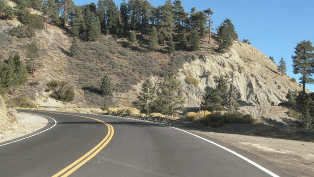 WS POV View of trees and mountain road / Wrightwood, California, USA