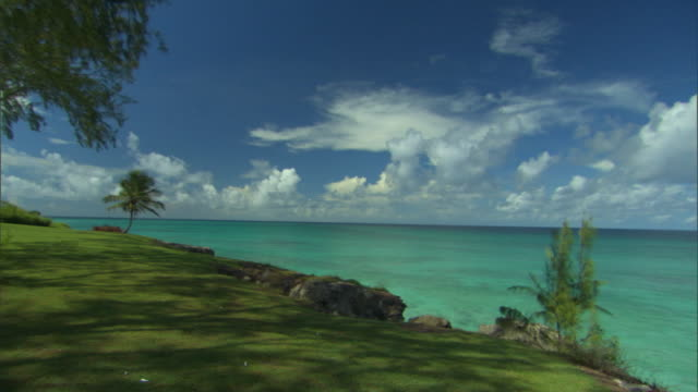 WS PAN View of trees on beach / Oistins, Christchurch, Barbados