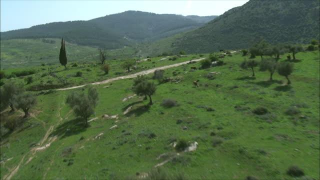 WS POV AERIAL View of Upper Galilee / Galilee, Israel