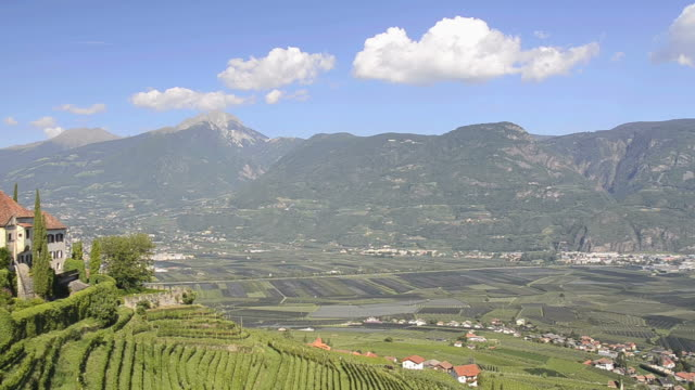 WS PAN View of vineyard and castle Lebenberg in front of mountains / Merano, Trentino, South Tyrol, Italy