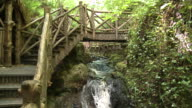 MS View of water flowing in glen grant gardens / Rothes, Speyside, Scotland