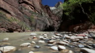 MS View of water with flat stones / Zion National Park, Utah, United States