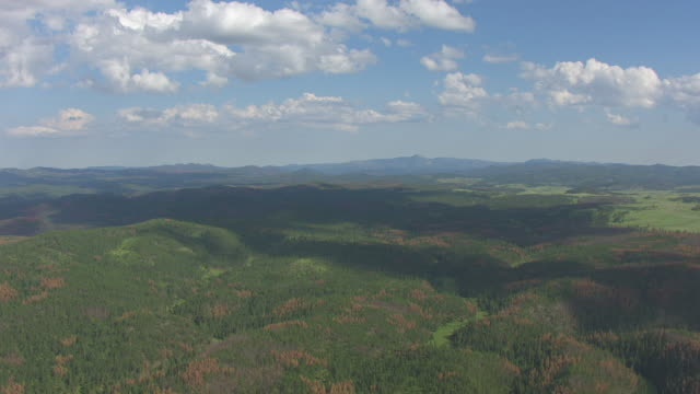 WS AERIAL TD PAN View of white clouds in sky to pine covering hills in Black Hills National Forest / South Dakota, United States