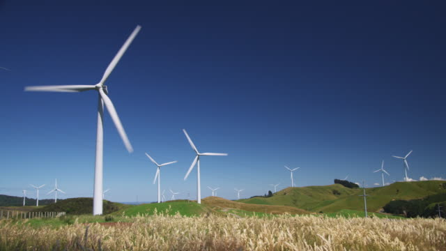 WS view of wind turbines in field / Palmerston North, New Zealand