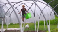 WS SLO MO View of Woman carries tub past green/hoop house at organic farm / Chatham, Michigan, United States
