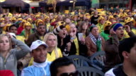 WS ZO CS View of World Cup 2010 soccer supporters show their supporting for Bafana Bafana at fanpark in Sandton / Johannesburg, Gauteng, South Africa