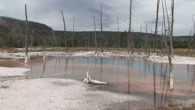 View of Yellowstone National Park in Wyoming United States