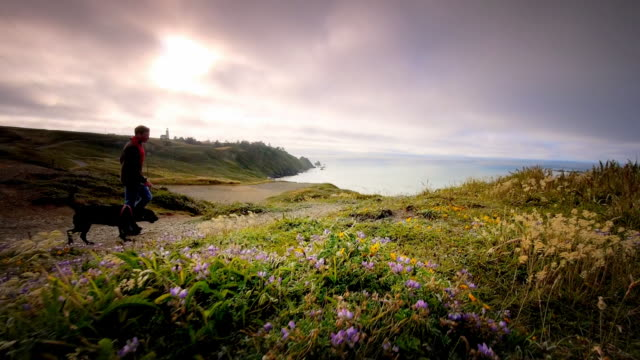 WS SLO MO POV View of young man walking his dog on trail by ocean / Cape Blanco State Park, Oregon, United States