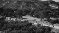 WS PAN HA View over convoy Soldiers and military trucks travel down road through desert