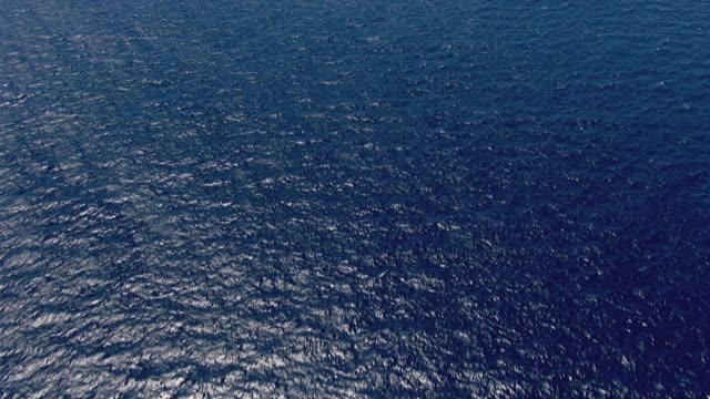 MS AERIAL View over ocean / Queensland, Australia