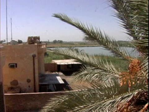 View overlooking US military base near palm tree / Haswa Iraq / AUDIO