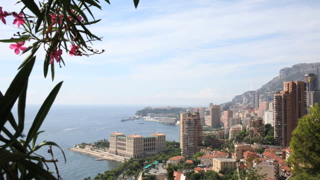 View through blossoms to Monaco (Monte Carlo) - establishing shot