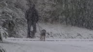 Views of heavy snow in Scotland
