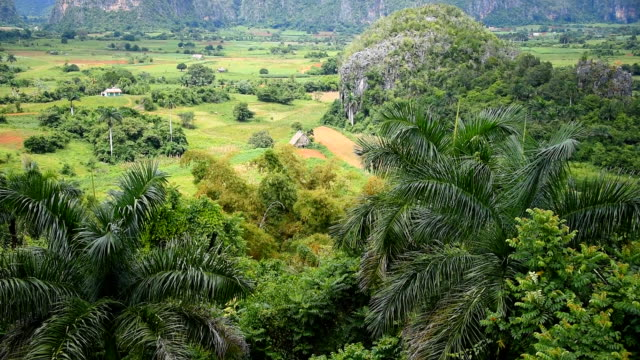 Vinales Valley: Exhuberant Vegetation and Beautiful View of Mountains