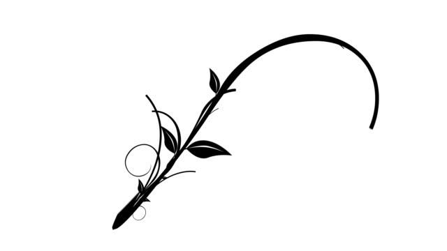 Vines & Leaves Growing (Isolated Flourish)