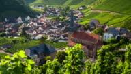 Vineyard and idyllic village - rack focus