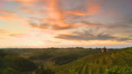 HD TIME LAPSE: Vineyards At Sunset