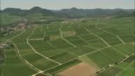 AERIAL Vineyards, Godramstein, Rhineland, Germany