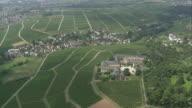 AERIAL Vineyards, Rhineland-Palatinate, Germany