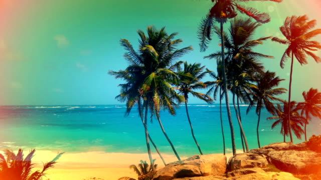 Vintage postcard look of Palm trees in Barbados
