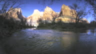 WS ZI Virgin river flowing through trees and mountain / Zion National Park, Utah, USA