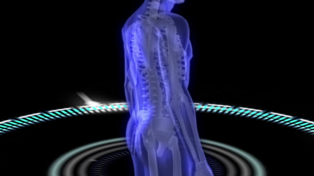 Virtual human body scan