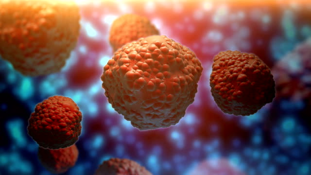 virus or T cell