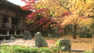 Visitors to Komyo-zenji Temple photograph beautiful autumn leaves.