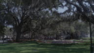 WS Visitors walking around lush gardens in a tree covered park / Savannah, Georgia, United States