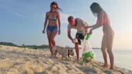 Volunteers cleaning the beach 4K