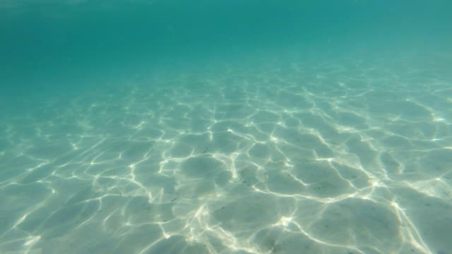 SILANCE Vs.NOICE Underwater Shot of Clear Blue Water and White Sand.