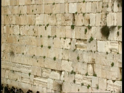 MWA Wailing wall, tilt down to reveal devout Jews praying, Jerusalem