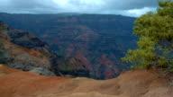 Waimea canyon and tropical bush Kauai Hawaii