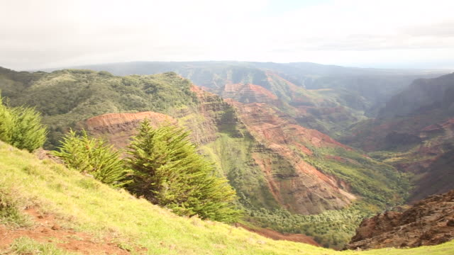Waimea Canyon on the island of Kauai during a sunny day.