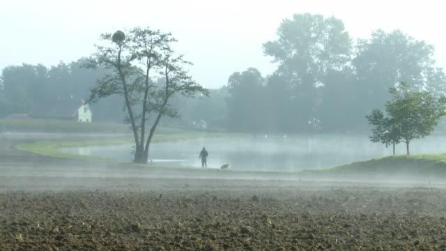 HD: Zu Fuß Hund an einem nebligen Morgen