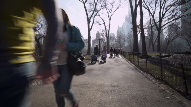 Walking along Central Park path among pedestrians on hazy, foggy day