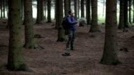 Cammina nella foresta