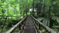 Walking on Hanging Bridge