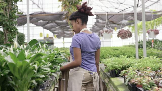 Walking Through Her Greenhouse