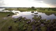Walking through the wetlands