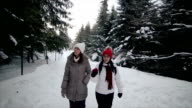 Walking with best friend in amazing winter ambient,winter vacation,camera stabilization shoot