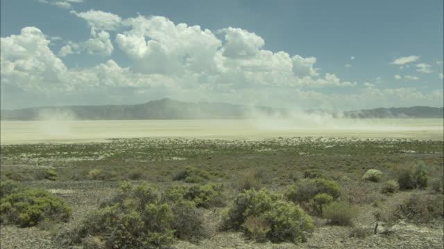 Wall of dust rising from desert floor