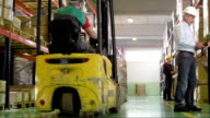 Warehouse Workers Checking Goods