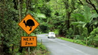 Warning sign for the Cassowary bird, Daintree National Park nr Cairns, Queensland, Australia